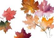Harvest Leaves II