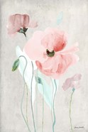 Soft Pink Poppies I