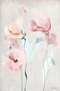 Soft Pink Poppies II