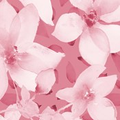 Blooming Pink Whispers I