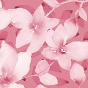 Blooming Pink Whispers II