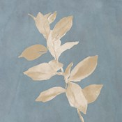 Tan Leaf on Blue Square I