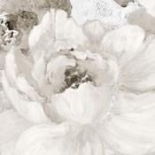 Light Grey Flowers I