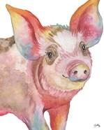 Pig I