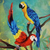 Tropical Birds in Love II