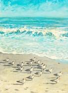 Sandpiper Beach Party