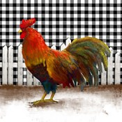 Morning Rooster II