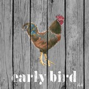 Early Bird Rooster