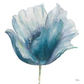 Flower in Blue I (on white)