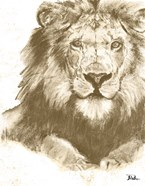 Muted Lion