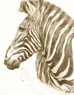 Muted Zebra