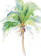 Watercolor Coconut Palm