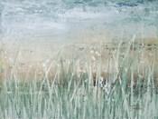 Grass Memories