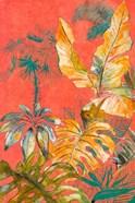 Orange Palm Selva I