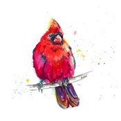 Christmas Cardinal III