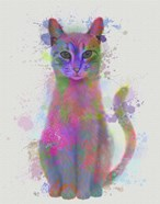 Cat Rainbow Splash 4