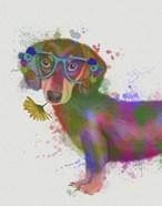 Dachshund And Glasses Rainbow Splash
