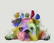 English Bulldog and Birds, Rainbow Splash
