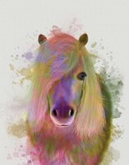 Pony 1 Portrait Rainbow Splash
