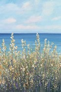 Flowers at the Coast I