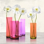 Poppies in crystal vases (Purple I)