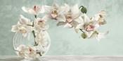 Orchid Arrangement II (Celadon)