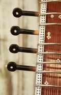 Sitar String Instrument, India