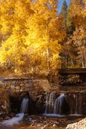Autumn Waterfalls In The Sierra