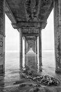 Scripps Pier, California (BW)
