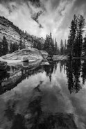 Reflective Lake At Yosemite NP (BW)