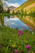 Paradise Divide Pond Reflection