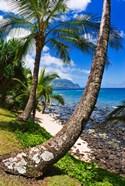 Hideaways Beach, Island Of Kauai, Hawaii