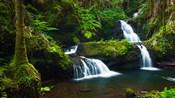 Onomea Waterfalls At The Hawaii Tropical Botanical Garden