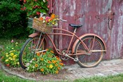 Old Bicycle With Flower Basket, Marion County, Illinois
