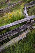 Split Rail Fence In Smith Rock State Park, Oregon