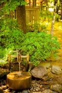 Japanese Garden, Dundee, Oregon