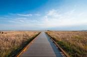 Walkway Going Through The Badlands National Park, South Dakota