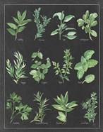 Herb Chart on Black White Border