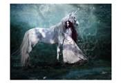 Fairy with Unicorn