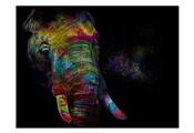 Kaleidoscope Elephant