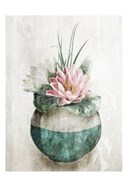 Water Lilly In Vase