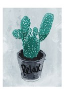 Relax Plant