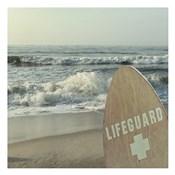 Vigilant Lifeguard
