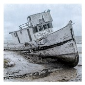 Shipwrecked Minnow 1
