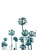 Palms in Teals