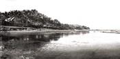 Black And White Beach