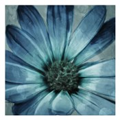 Uplifting Blue Flower Mate