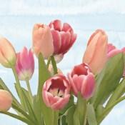 Fresh Spring Tulips IV