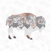 Square Buffalo