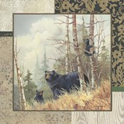 Black Bears with Border